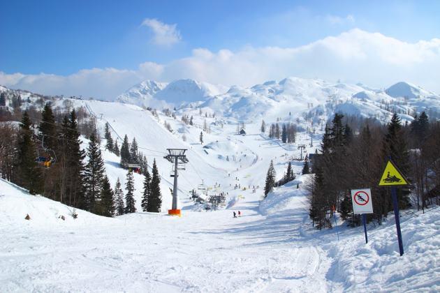 skijanje vogel