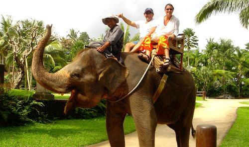putovanja u indiju